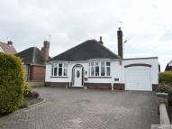 Detached Bungalow for sale in White Cottage,239...