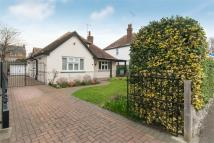 Omer Avenue Detached Bungalow for sale