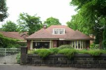 3 bedroom Detached Bungalow in Upper Park Road...