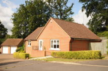 Detached Bungalow for sale in Umberstones...