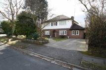 4 bed Detached property to rent in Carrwood Road, WILMSLOW...
