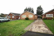 3 bed Detached Bungalow in Hurlbote Close...