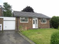 Detached Bungalow to rent in Ridge Close, Glossop...