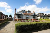 Brooklands Road Detached Bungalow for sale