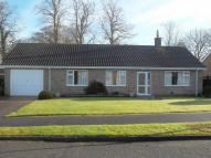 Detached Bungalow in 2 Park Avenue, Hundleby...