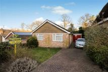 Detached Bungalow in Pinehurst, Burgess Hill...