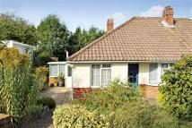 Semi-Detached Bungalow to rent in Noel Rise, Burgess Hill
