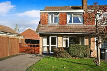 Petworth Drive semi detached house to rent