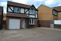 4 bed Detached property to rent in Godwin Road, Stratton...
