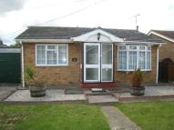 Detached Bungalow in Thompson Avenue...
