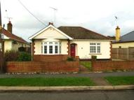 Detached Bungalow in The Driveway...