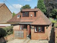Detached Bungalow for sale in Crawley Road, Horsham