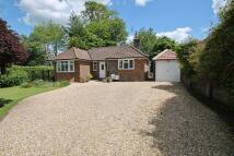 Hurston Lane Detached Bungalow for sale