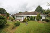 3 bed Detached Bungalow for sale in Woodpecker Lane...