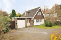 Detached Bungalow for sale in Langholm Road...