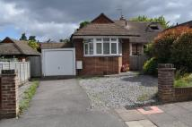 3 bed Semi-Detached Bungalow in Delves Avenue...