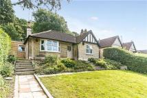 Warminster Road Detached Bungalow for sale