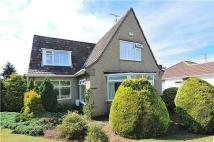 Detached house for sale in Blackhorse Lane, Downend...