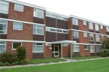 Marlborough Drive Flat for sale