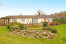Detached Bungalow for sale in Yate Rocks, Yate...