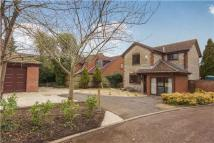 Gifford Close Detached house for sale