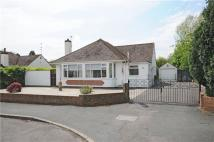 Detached Bungalow for sale in Robel Avenue, BS36 2BY
