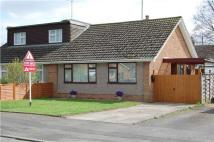 Hardy Road Semi-Detached Bungalow for sale