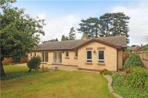 Detached Bungalow for sale in East End Road...