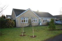 3 bedroom Detached Bungalow in Besbury Park...