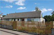 2 bedroom Detached Bungalow in Birches Close, Stroud...
