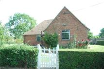 Detached Bungalow in Red Roofs, Fiddington...