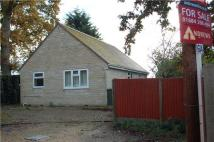 Detached Bungalow in Bredon, TEWKESBURY...