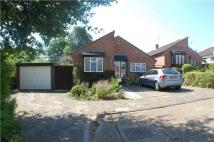 Detached Bungalow for sale in Lingfield Gardens...
