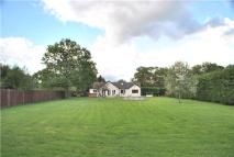 Detached Bungalow for sale in Smallfield, HORLEY...