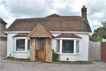 Detached Bungalow in Effingham Road, Burstow...