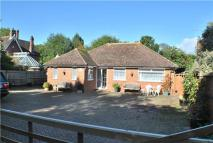 Detached Bungalow in Greenfields Close, HORLEY