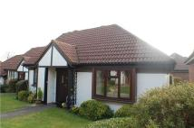 Semi-Detached Bungalow for sale in Chestnut Close, REDHILL...