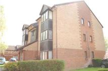 Studio flat for sale in Pasteur Close, COLINDALE...