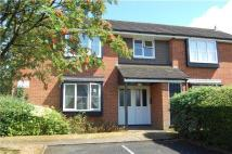 Studio flat for sale in Brantwood Way, ORPINGTON...