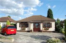 12 Gilroy Way Detached Bungalow for sale