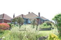 3 bed Detached Bungalow for sale in Meadows Road, EASTBOURNE