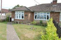 Semi-Detached Bungalow for sale in Dittons Road, Polegate...