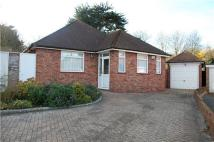 Detached Bungalow for sale in Downs Road, EASTBOURNE...