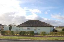 Semi-Detached Bungalow in 117 Eastbourne Road...