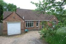 4 bedroom Detached Bungalow in Sedlescombe Road North...