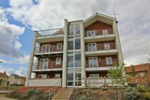 Powis Lane Apartment to rent