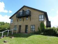 Studio flat to rent in Ramsthorn Grove...