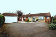 Detached Bungalow for sale in Walton Way, Mountsorrel...
