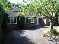 Sylvan Perks Lane Detached Bungalow for sale