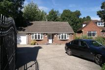 Detached Bungalow to rent in Langley Road, Langley...